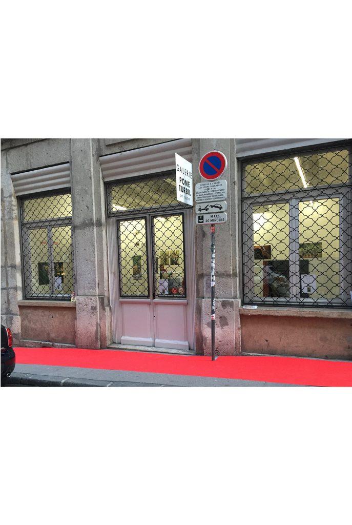 rue burdeau la rue des galeries, galerie d'art lyon, art contemporain lyon, galerie Lyon