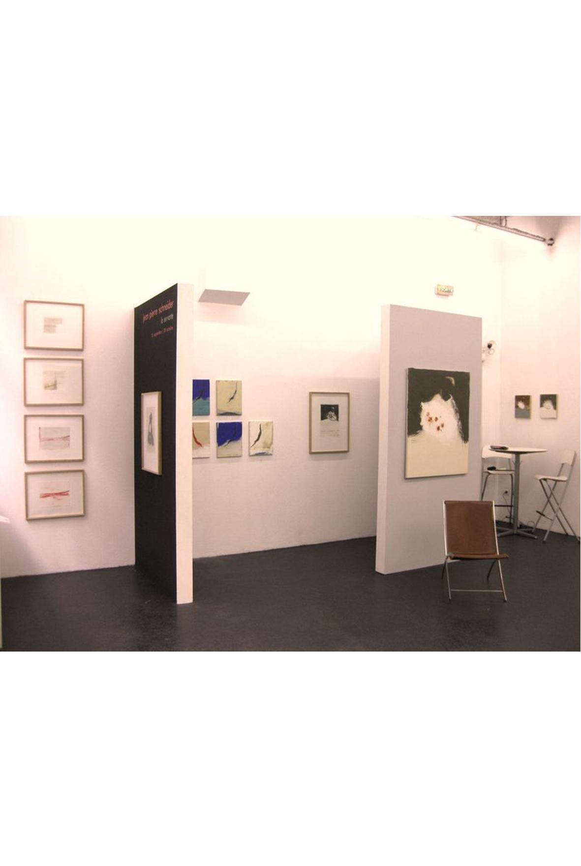 exposition Jean pierre Schneider, galerie d'art lyon, art contemporain lyon, galerie Lyon