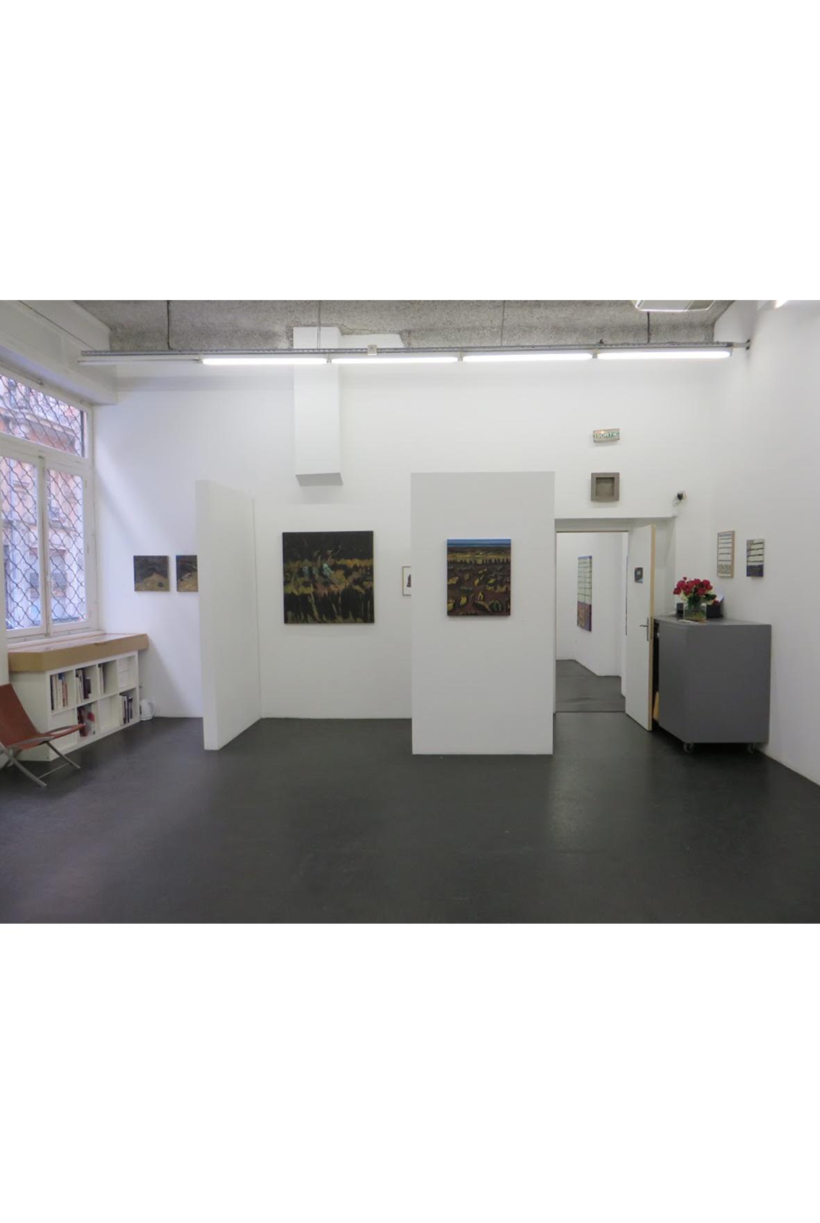 Guy de Malherbe, galerie d'art lyon, art contemporain lyon, galerie Lyon