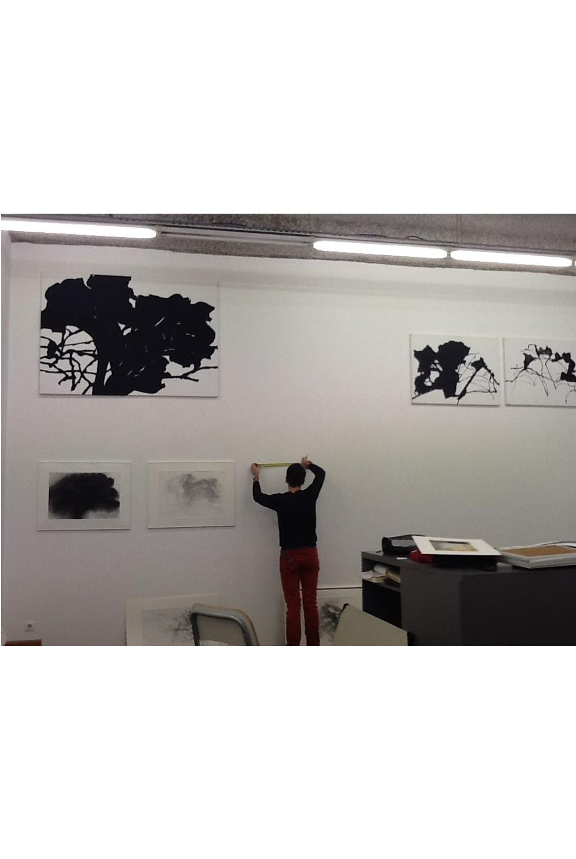 accrochage de l'exposition Hollan, galerie d'art lyon, art contemporain lyon, galerie Lyon