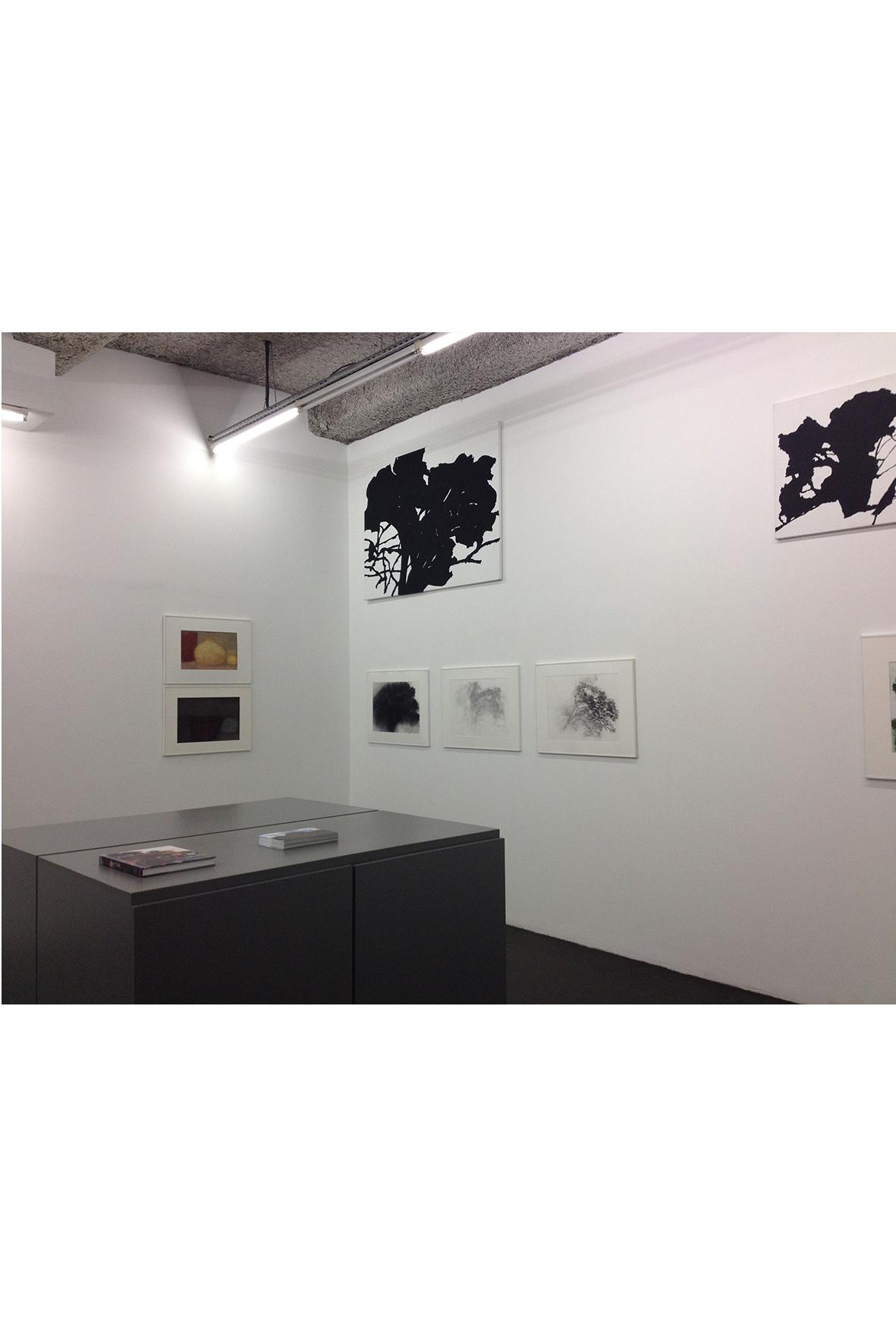 ALexandre Hollan, galerie d'art lyon, art contemporain lyon, galerie Lyon